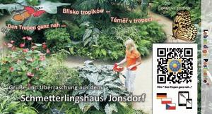 Schmetterlingshaus Jonsdorf - Lebendige Postkarte